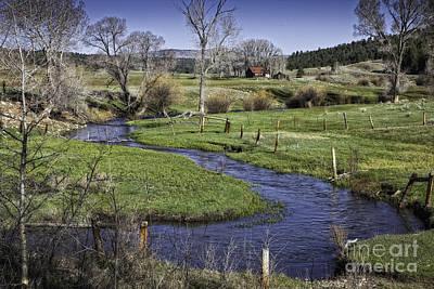 Farmland Near Chama Print by Timothy Hacker