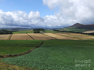 Photograph - Farmland Near Rhynie, Aberdeenshire by Phil Banks