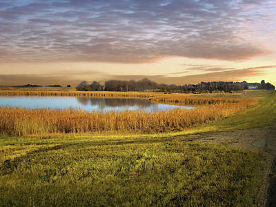 Farmland Pond Art Print