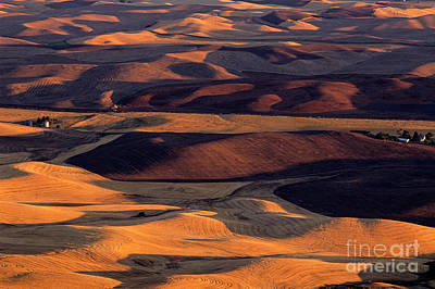 Photograph - Farmlands From Steptoe Butte by Jim Corwin