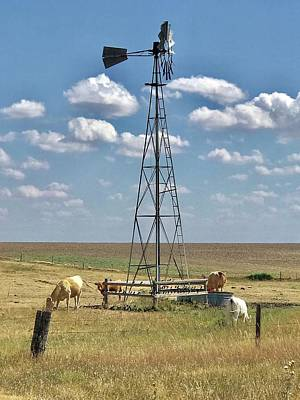 Photograph - Farmlife Memories by Shirley Heier
