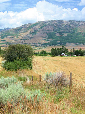 Photograph - Farm's Edge by David King
