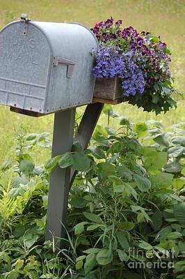 Farm's Mailbox Art Print