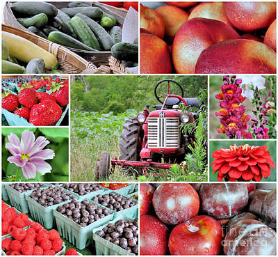 Farmstand Photograph - Farmstand Offterings by Janice Drew