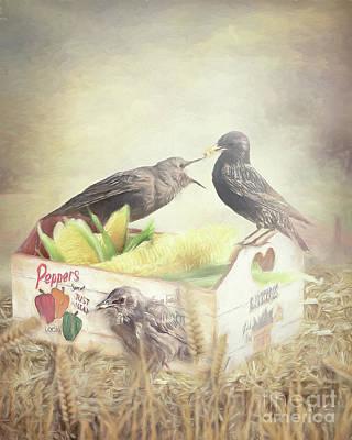 Starlings Mixed Media - Farmstand Starlings by Ulanawa Foote