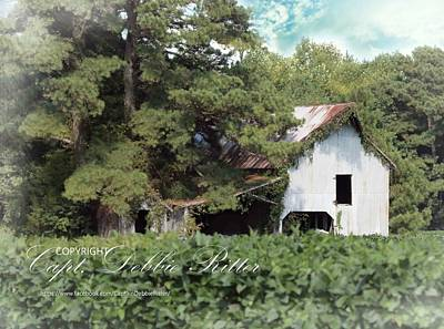 Photograph - Farmstead A by Captain Debbie Ritter