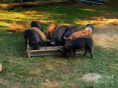 Painting - Farmyard Pigs by Lisa Gilliam
