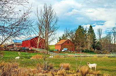 Barn Photograph - Farmyard by Steve Harrington