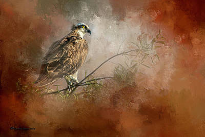 Hawk Mixed Media - Farsighted Wisdom by Marvin Spates