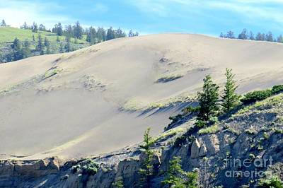 Photograph - Farwell Dunes by Frank Townsley