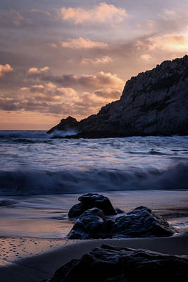 Point Reyes National Seashore Photograph - Farewell by Marnie Patchett