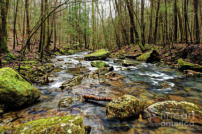 Photograph - Fast Flowing Creek by Paul Mashburn
