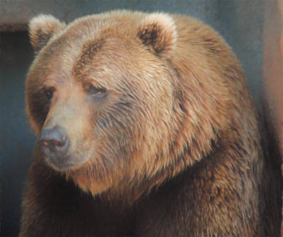 Painting - Fat Brown Bear by Emily Smith