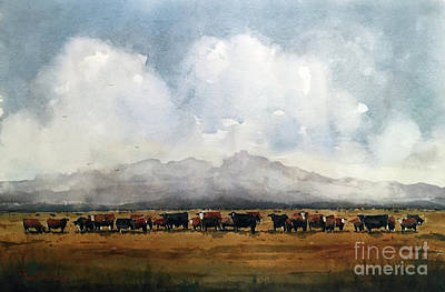 Painting - Fat Cows On Rancho Espuela Grass by Tim Oliver