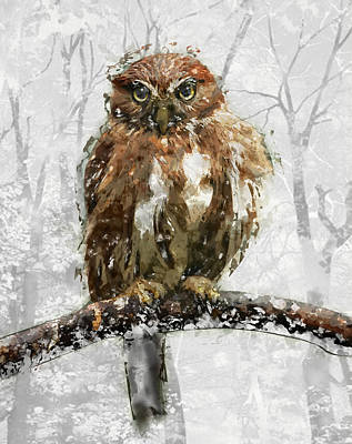 Pygmy Owl Wall Art - Painting - Fat Fluffy Pygmy Owl On Winter Tree Branch by Elaine Plesser