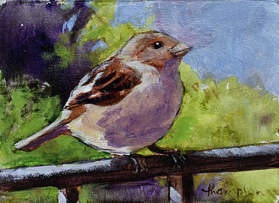 Fat Little Sparrow Art Print by Tracie Thompson