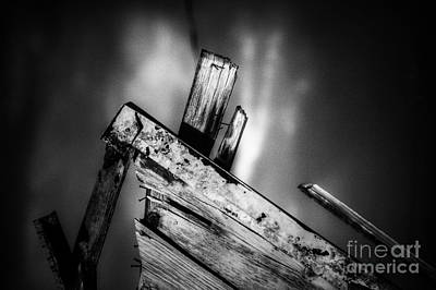 Photograph - Faultless  by Jessica Shelton