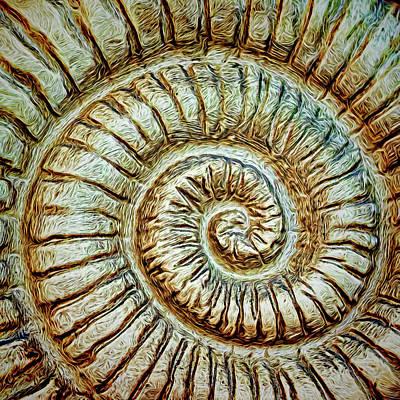 Photograph - Faux Fibonacci by Lewis Mann