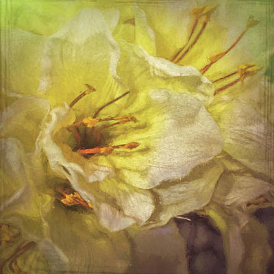 Art Print featuring the photograph Faux Flowers by Lewis Mann
