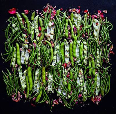 Photograph - Fava And String Beans Design by Sarah Phillips