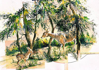 Painting - Fawn And Doe by Connie Williams