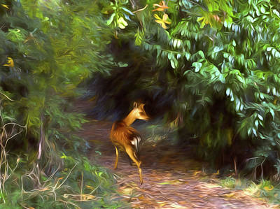 Fawn Forest Art Print by Sharon Lisa Clarke