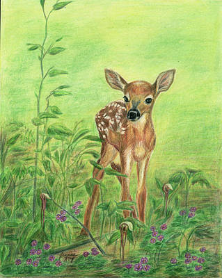 Art Print featuring the painting Fawn by Jeanne Kay Juhos