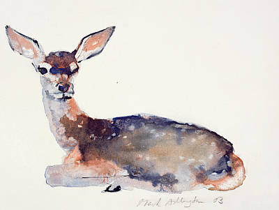 Watercolour Painting - Fawn by Mark Adlington