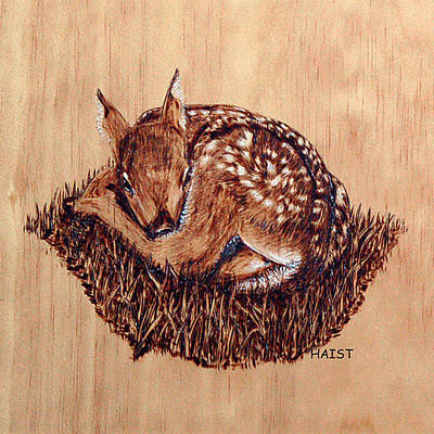 Pyrography - Fawn Pillow/bag by Ron Haist
