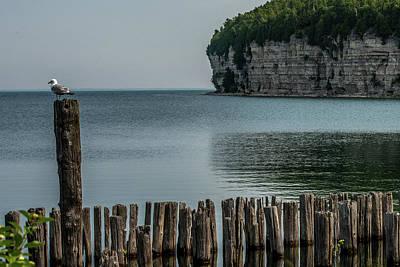 Photograph - Fayette Cliffs by Paul Freidlund