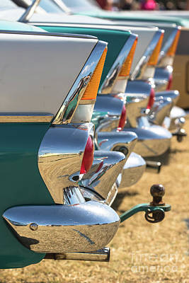 Photograph - Fb Fins by Howard Ferrier
