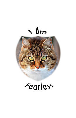 Photograph - Fearless by Judi Saunders