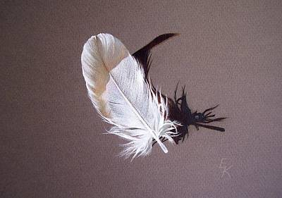 Drawing - Feather And Shadow 1 by Elena Kolotusha