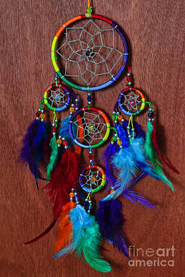 Feather Dreamcatcher Original by Tracy Hall