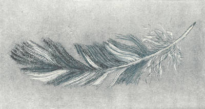 Painting - Feather Etching Study In Grey by Lisa Le Quelenec