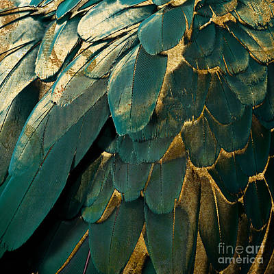 Feather Glitter Teal And Gold Art Print