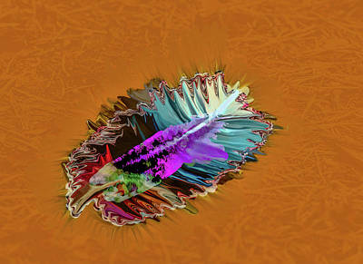 Digital Art - Feather #h8 by Leif Sohlman