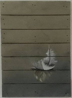 Pottery Barn Painting - Feather by Sonja  Roosenhart