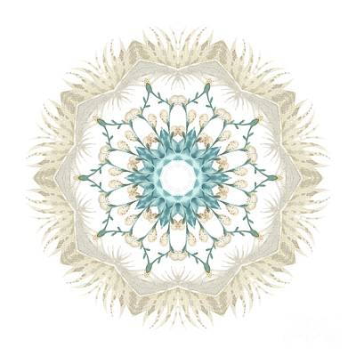 Digital Art - Feathers And Catkins Kaleidoscope Design by Mary Machare