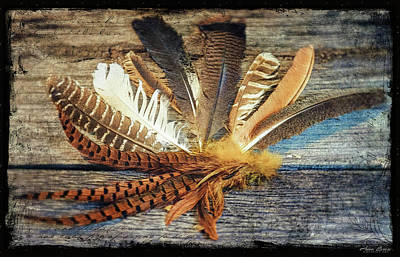 Photograph - Feathers by Anna Louise