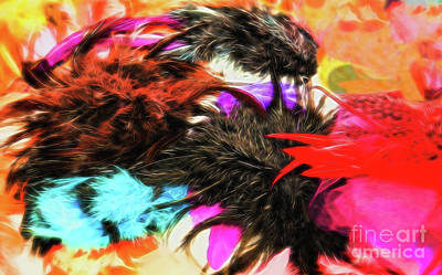 Photograph - Feathers by Colin Cuthbert