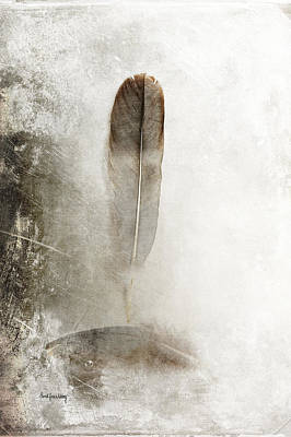Photograph - Feathers In Balance by Randi Grace Nilsberg