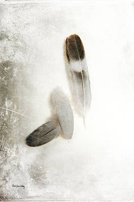 Photograph - Feathers Of Hope by Randi Grace Nilsberg