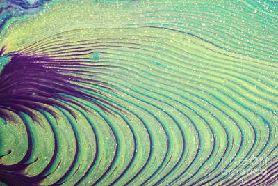 Photograph - Feathery Ripples by Julie Clements