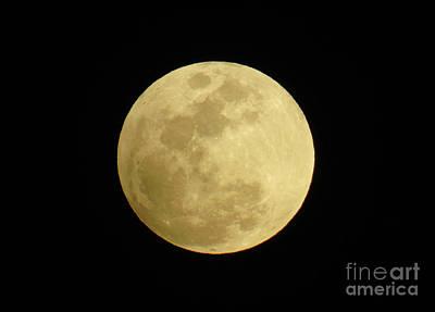 Photograph - February 2017 Full Moon by D Hackett