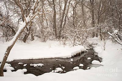 Colorado Photograph - February Snow by Kimberly Noxon