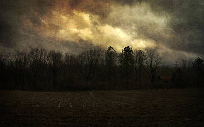 Photograph - February Storm by Cynthia Lassiter