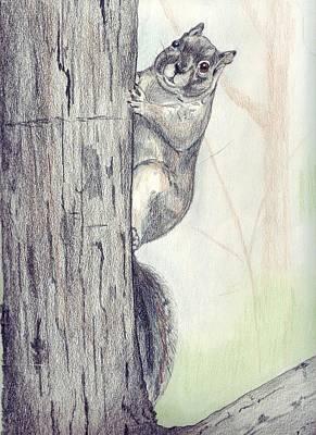 Feeder Raider Art Print by Debra Sandstrom