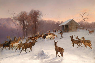 Feeding Of Fallow Deer And Red Deer In Winter Art Print by Mountain Dreams
