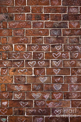 Grid Photograph - Feel The Love by Tim Gainey